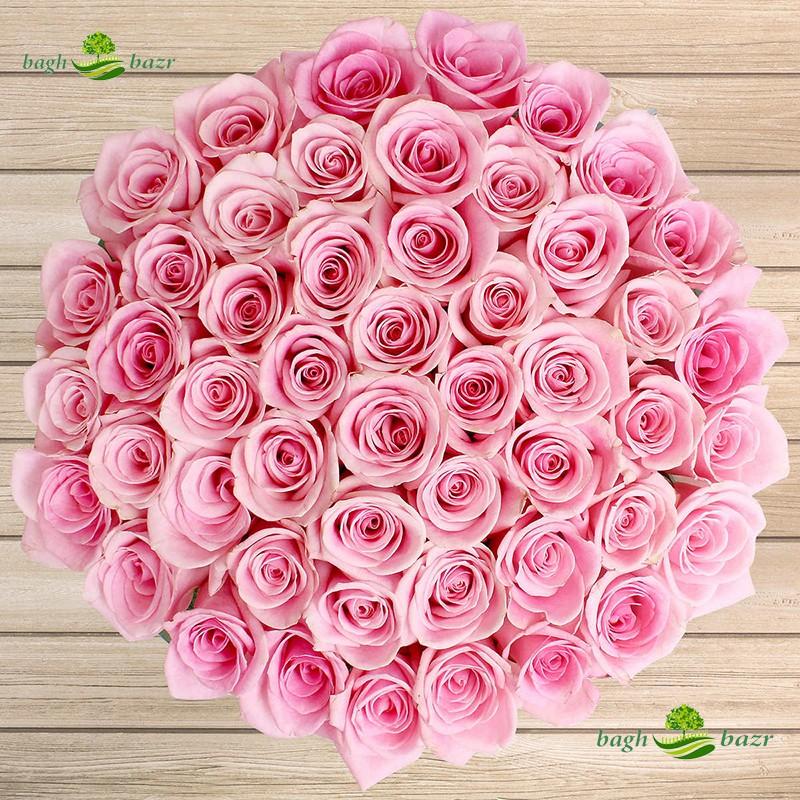 خرید بذر گل رز