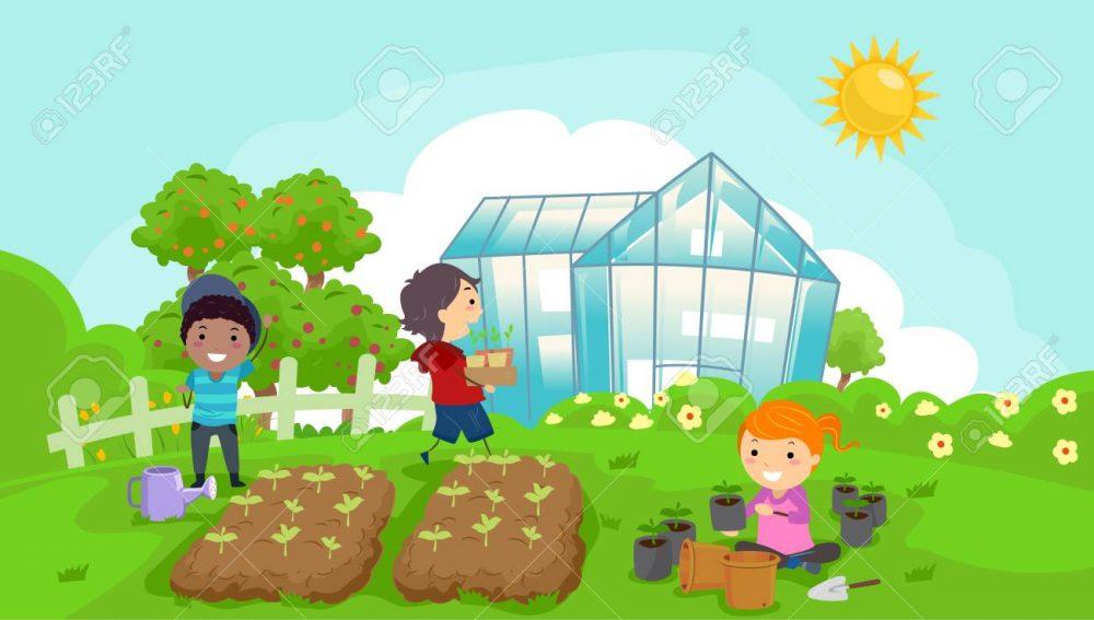 چگونه در خانه سبزیجات پرورش دهیم