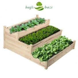 فواید پرورش سبزیجات در منزل