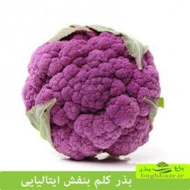 سبزیجات خاص