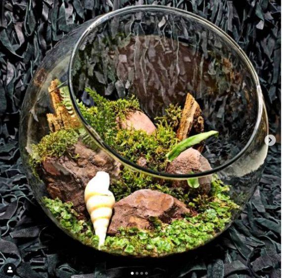موساریوم سنگ صدف