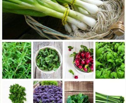 پکیج بذر سبزیجات